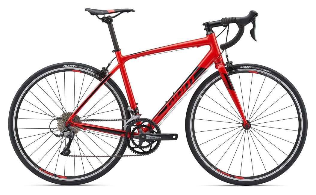 Top 5 Best Road Bikes of 2019 for Every Budget